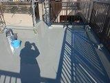 屋上陸屋根防水ウレタン塗装完了