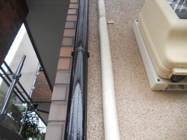 外壁サイディング塗装付帯部雨樋塗装完了