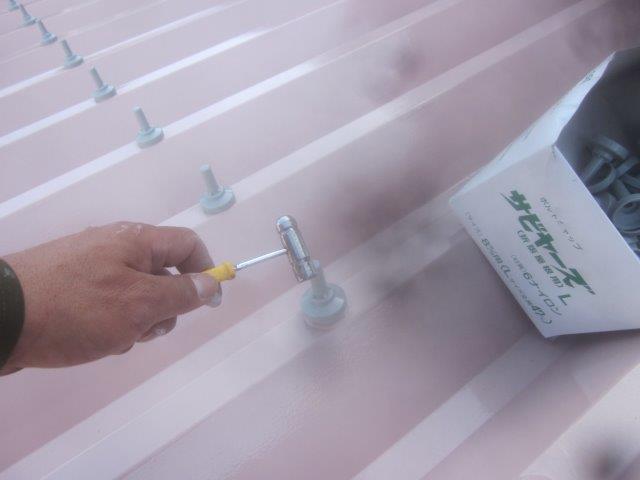 車庫折板屋根塗装溶剤シリコン塗装後ボルトキャップ取り付け状況
