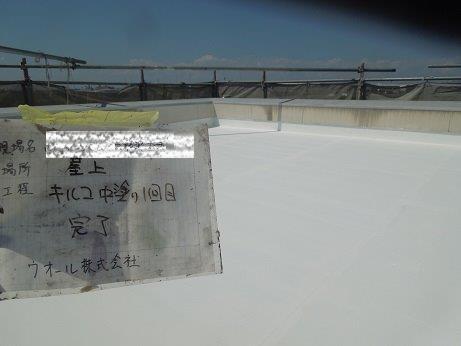 屋上防水遮断熱塗料塗装主材二層目塗装完了