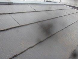 屋根遮断熱塗料塗装前タスペーサー挿入完了