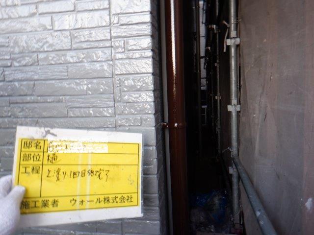 外壁付帯部雨樋塗装上塗り一層目塗装完了