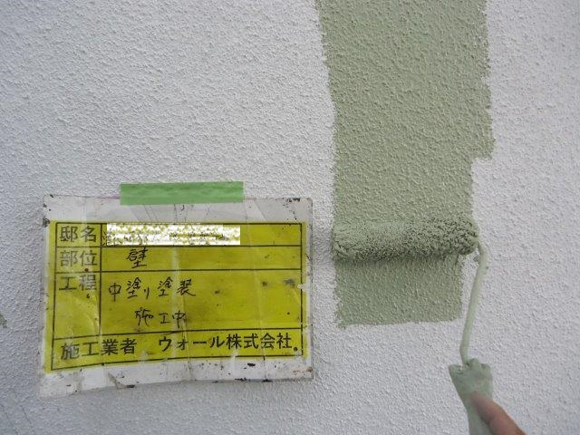 外壁モルタルリシン無機塗料塗装中塗り塗装状況