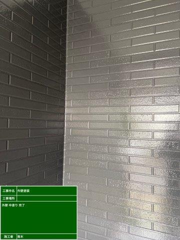 外壁サイディングフッ素塗料塗装中塗り塗装完了